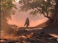 Кадр Кама Сутра: История любви